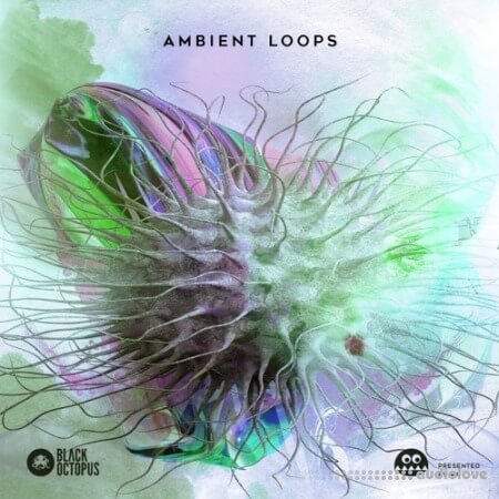 Black Octopus Sound AK: Ambient Loops WAV