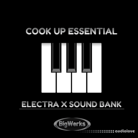 BigWerks Cook Up Essentials Synth Presets