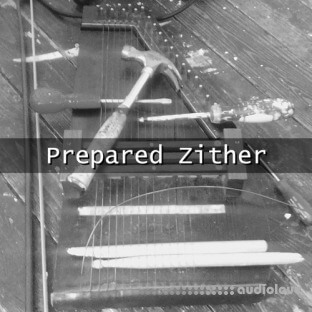 Glitchedtones Prepared Zither