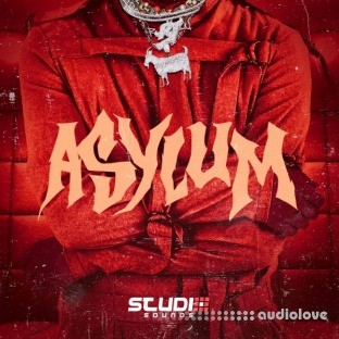 Studio Sounds Asylum