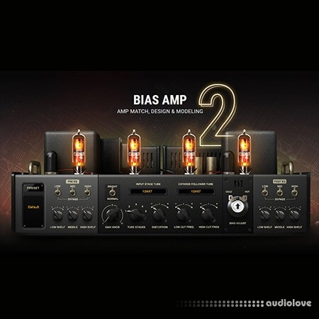 Positive Grid BIAS Amp 2 Elite Complete v2.2.8 WiN