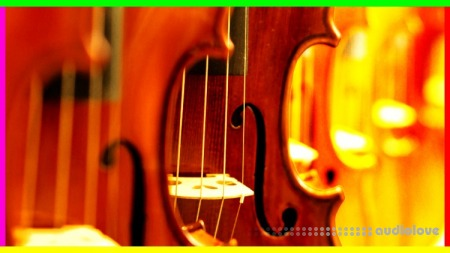 Udemy Violin Beginner to Advanced Vibrato VIBRATO MASTER COURSE TUTORiAL