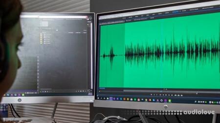 Lynda Premiere Pro Guru Audio Workflow and the Essential Sound Panel TUTORiAL