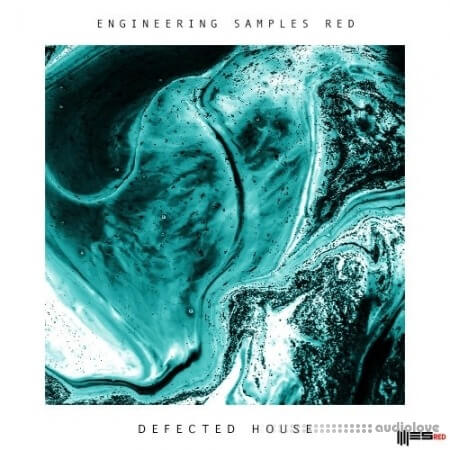 Engineering Samples RED Defected House
