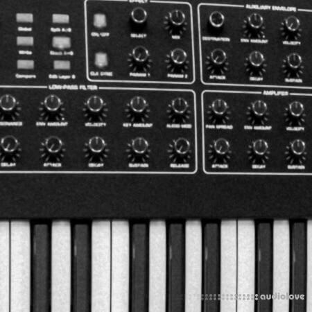 Riemann Kollektion 30 Techno Chords #3 (Bandcamp) WAV