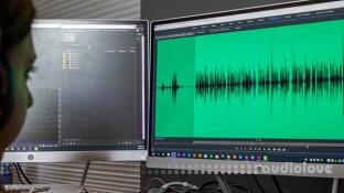 Lynda Premiere Pro Guru Audio Workflow and the Essential Sound Panel