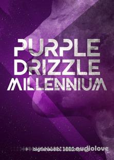 Big Fish Audio Purple Drizzle: Millennium