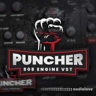 Industry Kits Puncher 808 Engine VST
