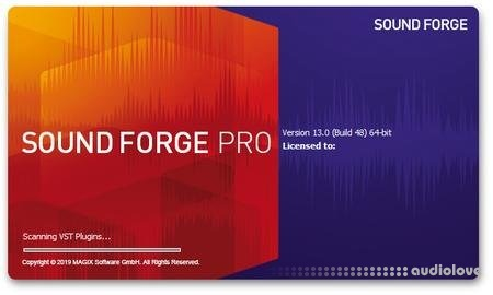 MAGIX SOUND FORGE Pro Portable v13.0.0.76 WiN