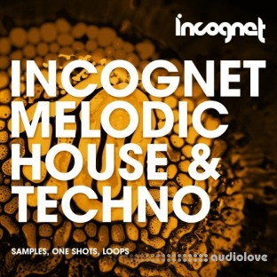 Incognet Melodic House and Techno