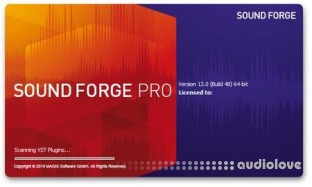MAGIX SOUND FORGE Pro Portable