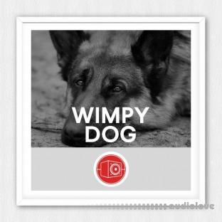 Big Room Sound Wimpy Dog