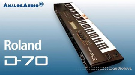 Nicebeats Synthline #3126 Roland D-70 KONTAKT