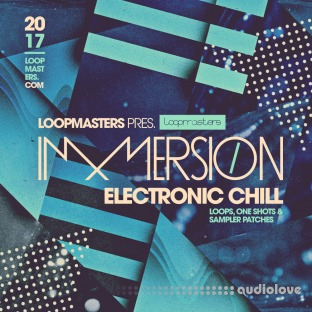 Loopmasters Immersion Electronic Chill
