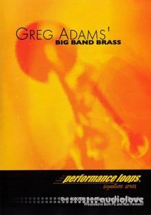 Big Fish Audio Greg Adams Big Band Brass