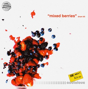 Treesound Mike Hector Mixed Berries (Drum Kit)