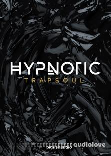 Big Fish Audio Hypnotic Trapsoul