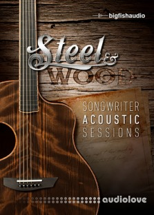 Big Fish Audio Steel and Wood Songwriter Acoustic Sessions