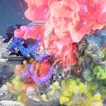Detroit Underground Marshall Applewhite presents Transdimensional Sludge Loops WAV