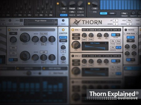 Groove3 Thorn Explained TUTORiAL