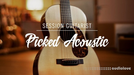 Native Instruments Session Guitarist Picked Acoustic v1.0 KONTAKT