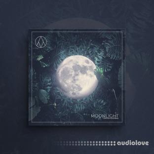 AngelicVibes Moonlight