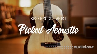 Native Instruments Session Guitarist Picked Acoustic