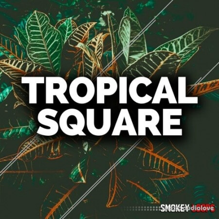 Smokey Loops Tropical Square WAV MiDi