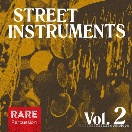 RARE Percussion Street Instruments Vol.2 WAV