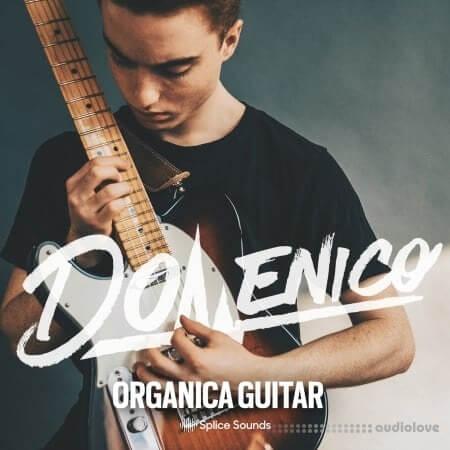 Splice Sounds DOMENICO: Organica Guitar