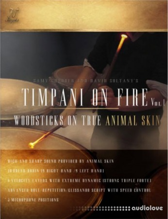 FTSamples Timpani On Fire Vol.1 KONTAKT