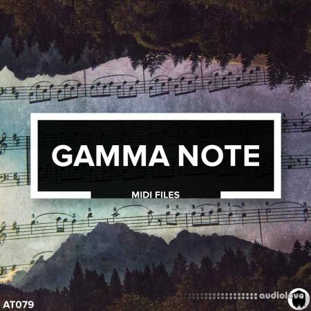Audiotent Gamma Note MiDi