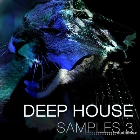 SPF Samplers Deep House 3 WAV