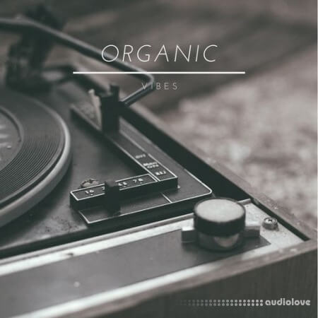Tariq Ali Organic Vibes WAV