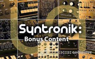 IK Multimedia Syntronik Bonus Content