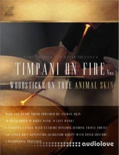 FTSamples Timpani On Fire Vol.1