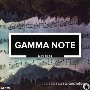 Audiotent Gamma Note