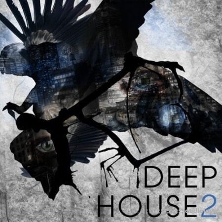 SPF Samplers Deep House 2 WAV