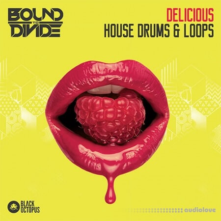 Black Octopus Sound Delicious House Drums and Loops