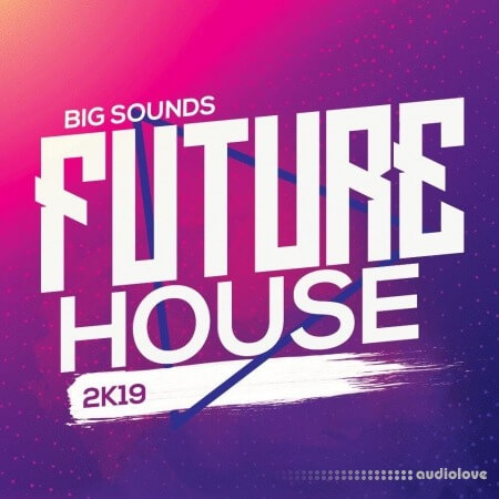 Big Sounds Future House 2K19 WAV MiDi Synth Presets