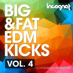 Incognet Big and Fat EDM Kicks Vol.4