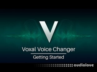 NCH Voxal Voice Changer Plus