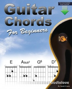 Chords for Guitar: Transposable Guitar Chords using the CAGED System by Gareth Evans