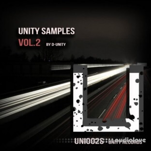 Unity Records Unity Samples Vol.2 by D-Unity