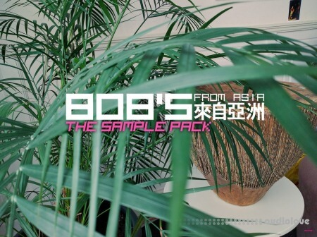 DELAY 808's from Asia The Sample Pack WAV