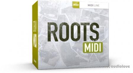 Toontrack Roots MiDi MiDi WiN MacOSX