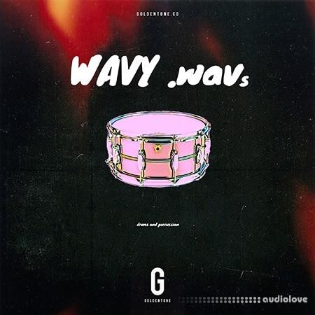 Gondentone Wavy Wavs (Drum Kit) WAV