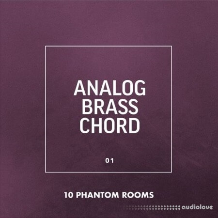 10 Phantom Rooms Analog Brass Chord 01 WAV