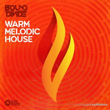 Black Octopus Sound Warm Melodic House by Bound To Divide WAV MiDi Synth Presets