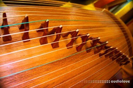 Kong Audio ChineeGuZheng